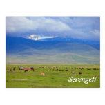 Serengeti Postal