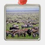 Serengetti aclara por completo de manadas de cebra ornamento para reyes magos