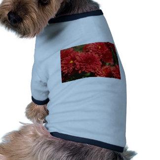 Serenidad de color rojo oscuro ropa de perros