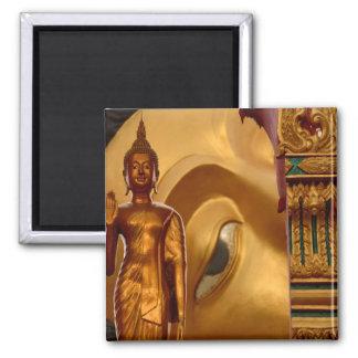 Serenidad de la tranquilidad de la paz de Buda Tai Imanes