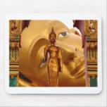 Serenidad de la tranquilidad de la paz de Buda Tai Tapete De Ratones