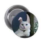 Serenity as Bunny button