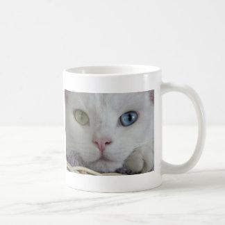 Serenity close-up mug