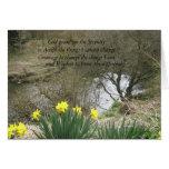 serenity daffodils greeting card
