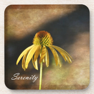 Serenity Echinacea Floral Coasters