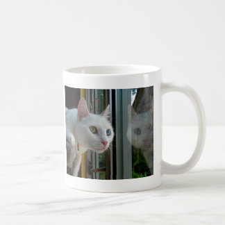 Serenity interested mug
