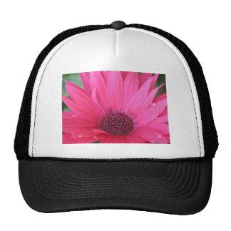Serenity.jpg Hat