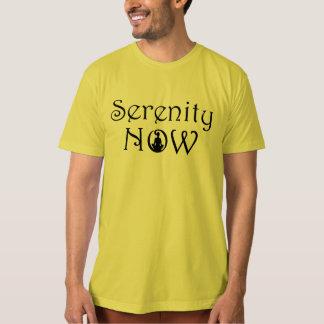 Serenity Meditation T Shirt - Organic Yoga Tee