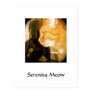 Serenity Meow Postcard