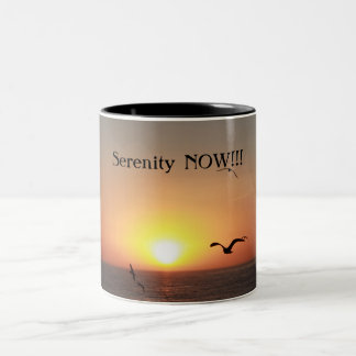 Serenity NOW!!! Two-Tone Coffee Mug