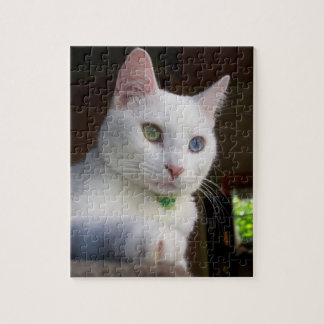 Serenity Odd-Eyed Cat puzzle