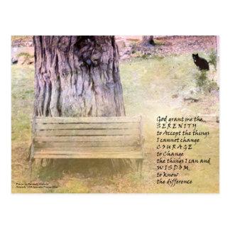 Serenity Prayer Bench, Tree, Cat Postcard