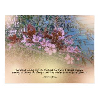 Serenity Prayer Blossoms Blue House Postcard