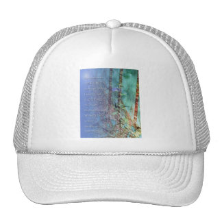 Serenity Prayer Blue Green Fence and Weeds Trucker Hat