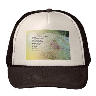Serenity Prayer Boulder and Butterfly Bush Trucker Hat