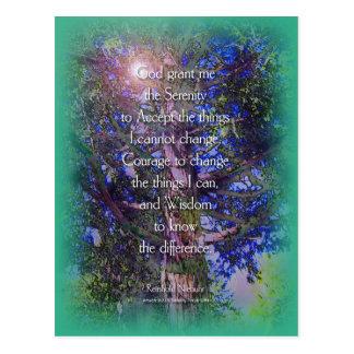Serenity Prayer Cedar Tree Postcard