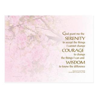 Serenity Prayer Cherry Blossoms Postcard