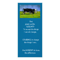 SERENITY PRAYER: COWS: ART, PAINTING RACK CARD