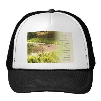 Serenity Prayer Duck Pond Mesh Hat