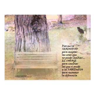 Serenity Prayer Garden in Spanish Postcard