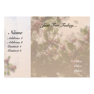 Serenity Prayer Holly Large Business Card