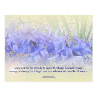 Serenity Prayer Hyacinths Postcard