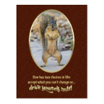Serenity Prayer in a Nutshell Postcard