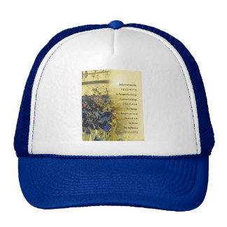 Serenity Prayer Irises and Fence Hats