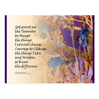 Serenity Prayer Irises Blue and Orange Postcard