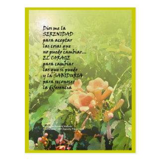 Serenity Prayer  La Oración de la Serenidad Postcard