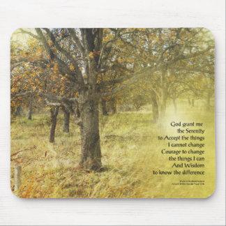Serenity Prayer Oak Grove Mouse Pad