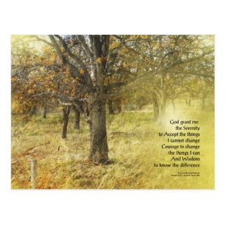 Serenity Prayer Oak Grove Postcard