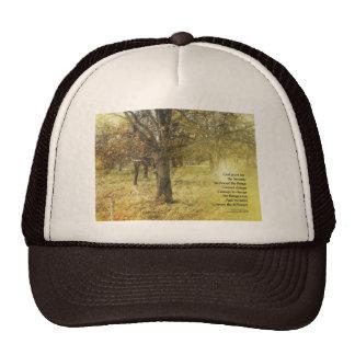 Serenity Prayer Oak Grove Trucker Hat