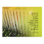 Serenity Prayer Old Fence and Red Tulips Post Card