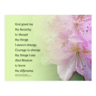 Serenity Prayer Pink Rhododendrons Postcard