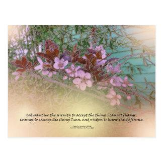 Serenity Prayer Plum Blossoms Green House Postcard