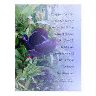 Serenity Prayer Purple Tulip Postcard