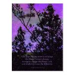 Serenity Prayer Trees and Sky Violet Postcard