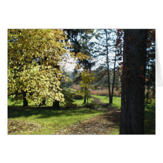 Serenity - Quiet Path Card