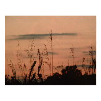 Serenity Series Postcard Pink Sunset