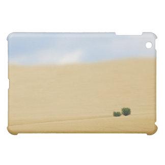 Serenity Speck Case iPad Mini Cases