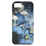Serenity Stream iPhone Case iPhone 5 Cover