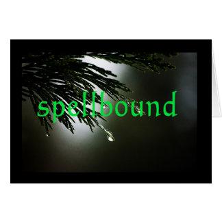 Serenity Word Drops: Spellbound Card