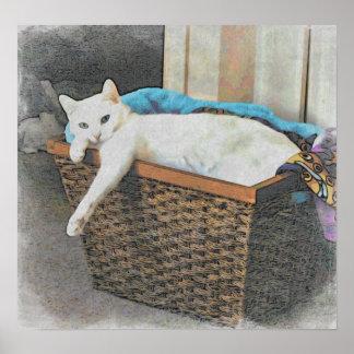 Serenity's basket poster