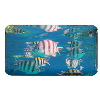 Sergeant Major Fish iPod Touch Case-Mate Case
