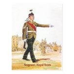 Sergeant, Royal Scots guards Postcard