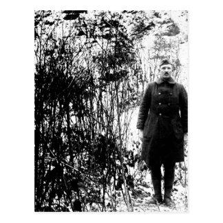 Sergt. Alvin C. York, 328th Infantry_War Image Postcard