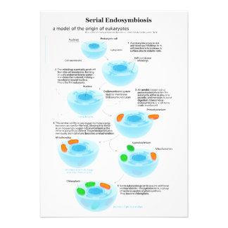 Serial Endosymbiosis Theory mitochondria plastids Personalized Invite