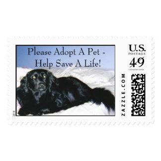 Serie animal del rescate sello