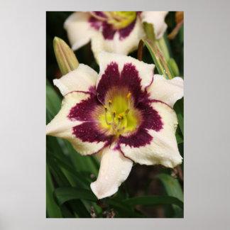 Serie botánica 71 impresiones